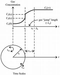 Gas Exchange Diagram  U2014 Untpikapps
