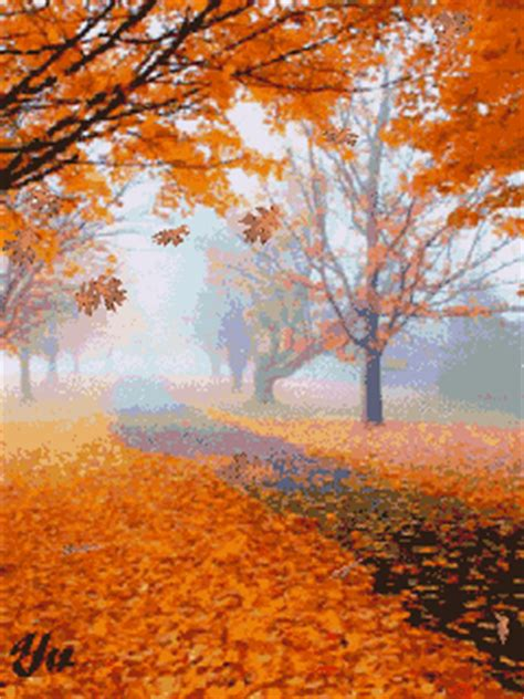 autumn fall   leaves animated pictures