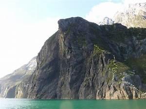 Treillis Soudé Point P : copper point climb nz ~ Dailycaller-alerts.com Idées de Décoration