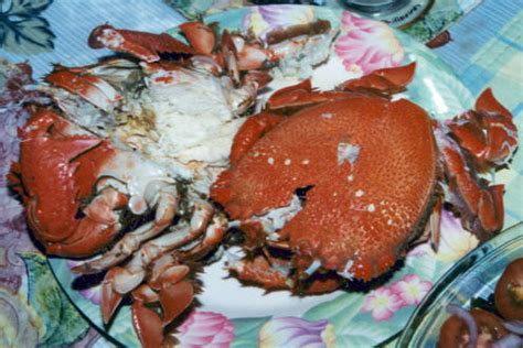 zamboanga filipino food recipes  collection  favorite