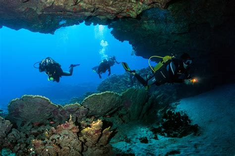 Underwater Dive - scuba diving and snorkeling