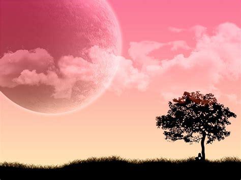 Free Pink Wallpapers For Desktop