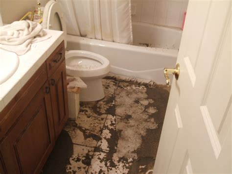 100 bathroom sink smells like rotten basement fresh