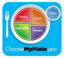 Healthy Eating Plate vs USDA's MyPlate The Nutrition