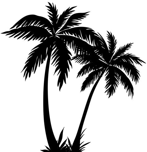palm tree clipart black and white no background palm trees silhouette png clip image gallery