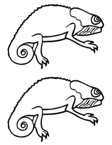 chameleon template mixed up chameleon template