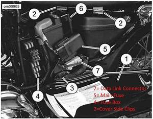 2004 Sportster Wiring Diagram Fuse Box