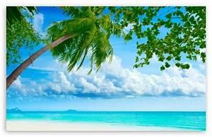Tropical Beach Resorts 4K HD Desktop Wallpaper for 4K ...