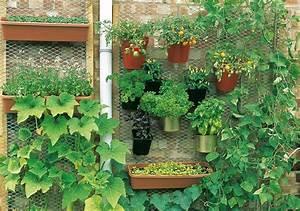 Urban Gardening Definition : urban gardening creating space in the city ~ Eleganceandgraceweddings.com Haus und Dekorationen
