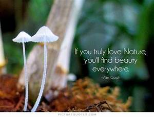 71+ Famous Nature Quotes & Sayings
