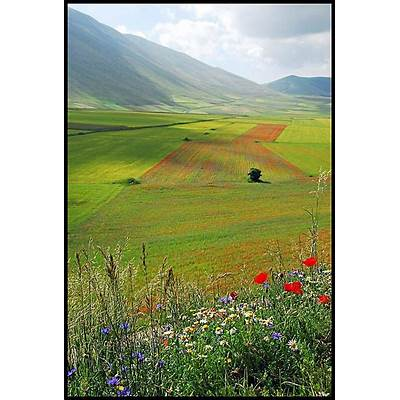 61 best images about Castelluccio Umbria Italy on