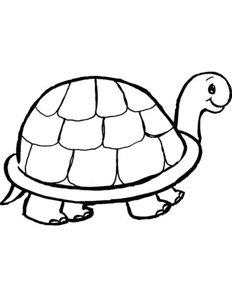 immagini da ricopiare per bambini disegni tartarughe da colorare az colorare