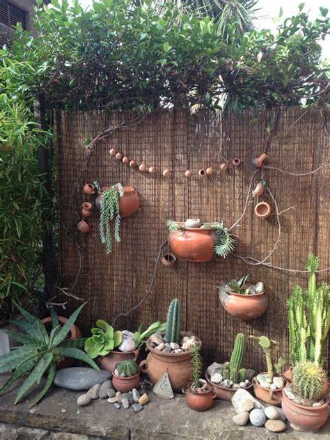 jardin rustico  cactus  suculentas cactus