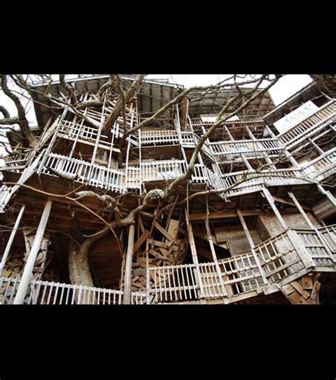 d 233 couvrez la plus grande maison construite dans les arbres en images