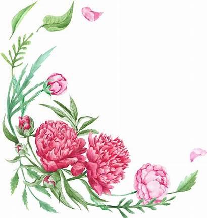 Border Transparent Corner Watercolor Floral Flower Flowers