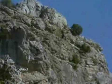 chinese woman killing  goat girl  slaughter animal mp gp flv mp video indir  man