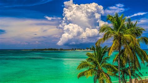 Tropical Backgrounds by Tropical Island Wallpaper And Background Image 1366x768