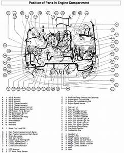 Automotive 1996 Lexus Ls400 Alternator Wiring Diagram
