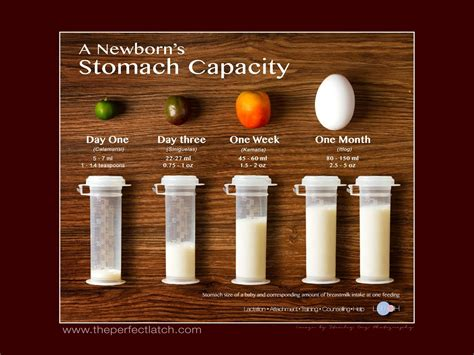 Your Newborns Stomach Capacity First Three Months With