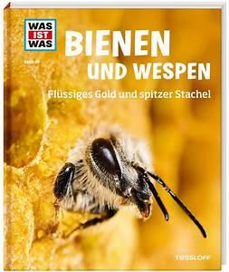 Bienen Und Wespen : was ist was band 019 bienen und wespen tessloff online shop schnell sicher bequem einkaufen ~ Whattoseeinmadrid.com Haus und Dekorationen