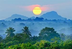 Nature, Landscape, Mist, Sunset, Mountain, Blue, Forest