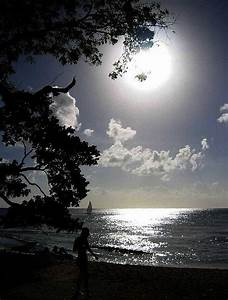 1219 best Sounds of Silence images on Pinterest ...