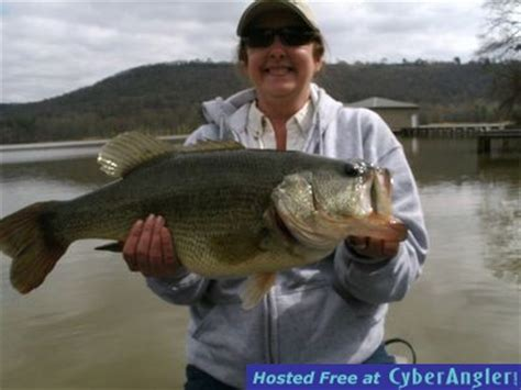 guntersville lake big largemouth bass  winter