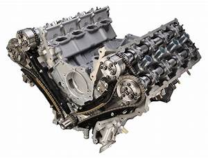 Ford 5 0l 32 Valve Dohc Coyote Engine