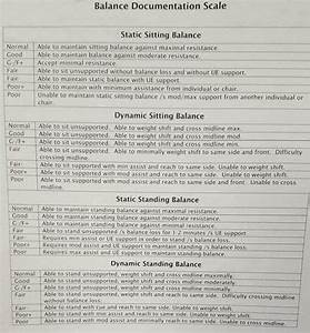 Functional Physical Therapy Standing Balance Grades