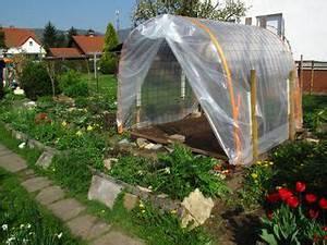 Abri A Tomate : le mildiou explications et serre pour culture de tomates ~ Premium-room.com Idées de Décoration
