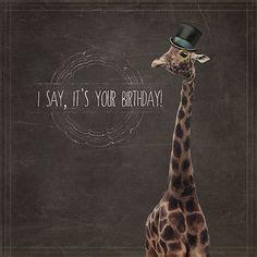 happy birthday baby images giraffes