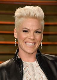 Pink Singer Alecia Moore Hair