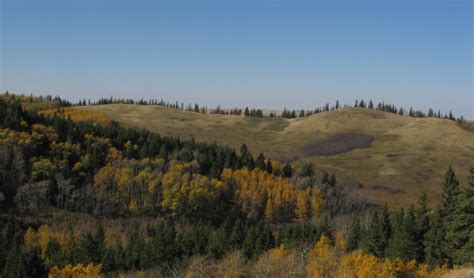 cypress hills provincial park campground upgrades