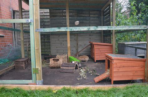kaninchen außengehege bauanleitung hasengehege innen selber bauen herzlich wilkommen die besten 25 selber bauen meerschweinchenk