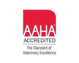 american animal hospital association about our veterinary practice ga 30041