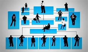 Types Of Organizational Structure With Meanings Explained