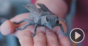 A fold apart a nasa physicist turned origami artist for A fold apart a nasa physicist turned origami artist