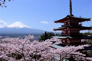 Visit the Awe-Inspiring Mt. Fuji | TripleLights by Travelience