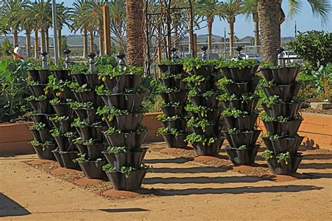 Vertical Gardening Strawberries by Save Space With Vertical Gardening Thyme To Grow