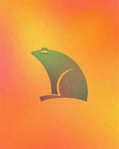 Animal Circles Logos Perfect Colorful Dorota Frog