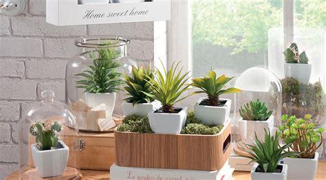 les bonnes idées pour utiliser les plantes dans la décoration
