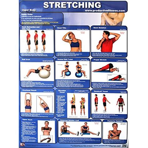 Stretching your shoulder as well as chests might be one of the best exercises you can do for your body. Productive Fitness Poster Series Upper Body Stretching Exercises Laminated * You can get more ...