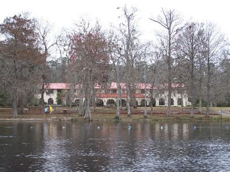 Wakulla Springs Boat Tour by View Of Lodge From Boat Tour Picture Of The Lodge At