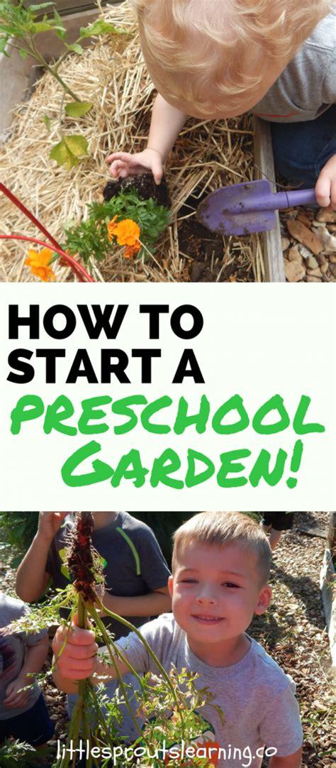 how to start a preschool garden 952 | How to Start a Preschool Garden 1