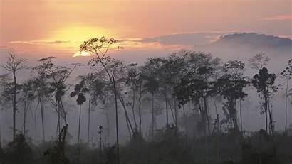 Chill Cool Peru Wallpapers Forest Sunrise Desktop