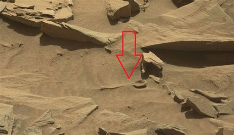 nasas curiosity rover spotted  giant alien spoon