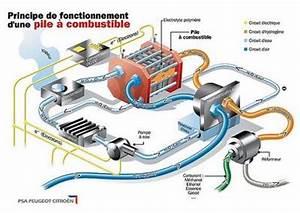 Fouiller Entre Une Pile De Voiture : pile combustible une mini usine lectrochimique l 39 argus ~ Medecine-chirurgie-esthetiques.com Avis de Voitures
