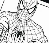 Spiderman Coloring Spider Pages Drawing Venom Printable Ultimate Amazing Getcolorings Homecoming Getdrawings Clipartmag sketch template