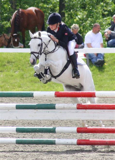 jumping pony horse horses ponies jumper equestrian little kid hunter riding jumpers finals child charlotte under visiter heste cheval ga