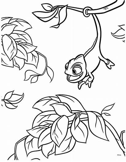 Tangled Coloring Pages Rapunzel Pascal Printable Disney